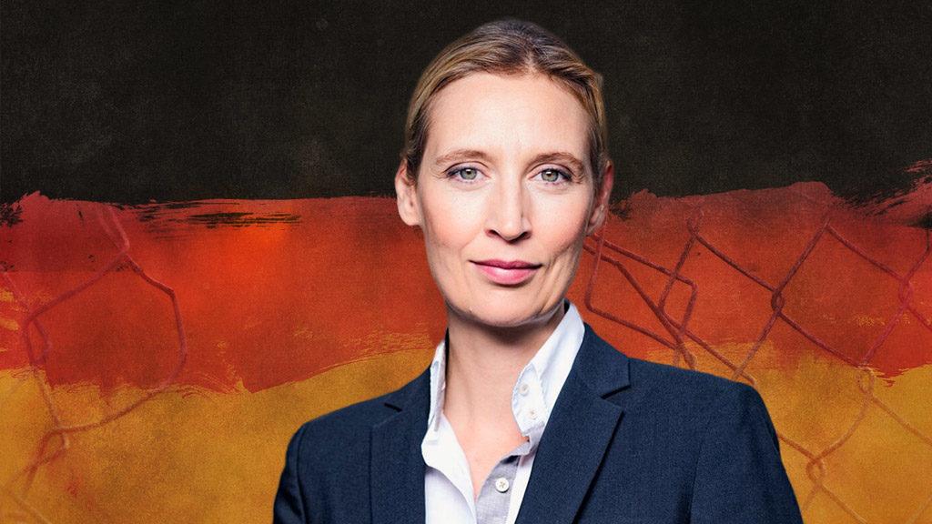 Alice Weidel: Umfassende Grenzkontrollen sind möglich